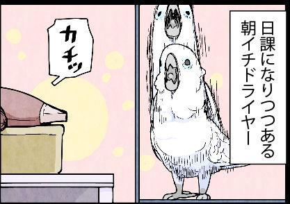 2017_04y03