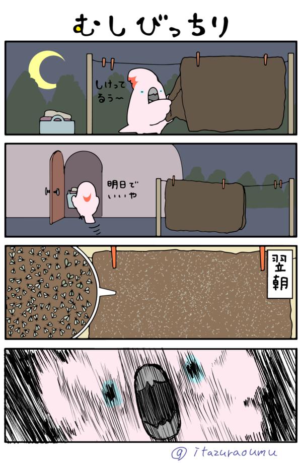 むしびっちり_1