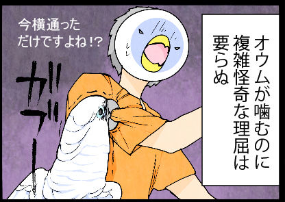 2017_060rtui15
