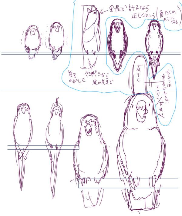 鳥左ページ