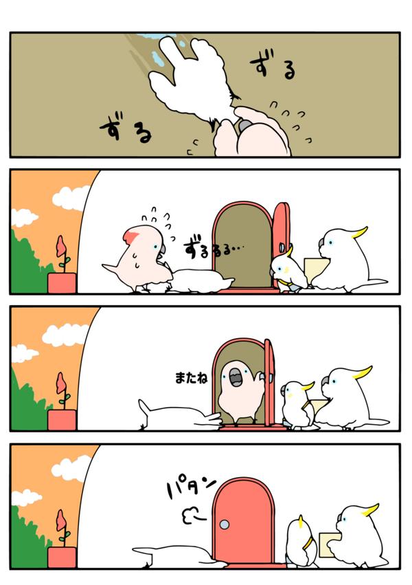 蟷螂捕食6!