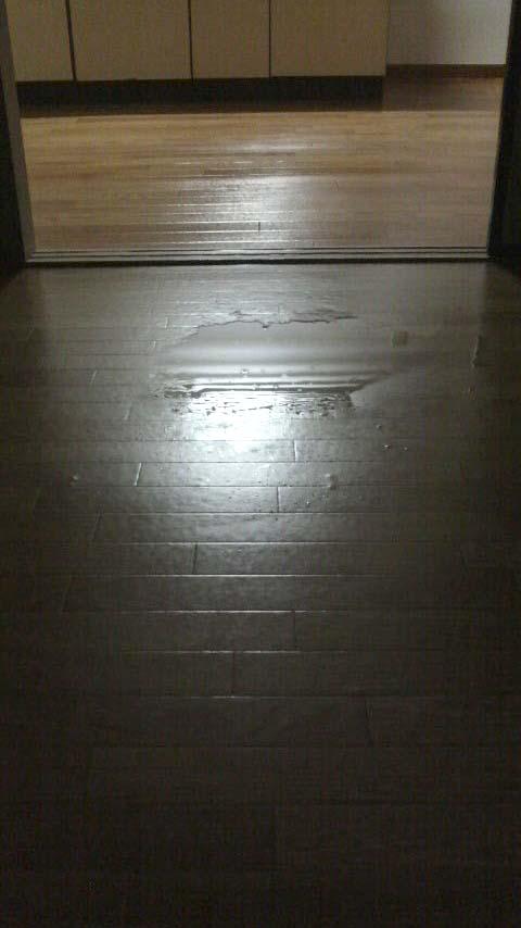入居前水たまり