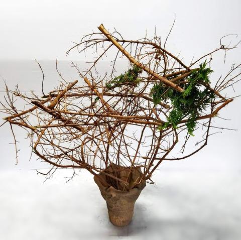 ikebana2018-10(2)B