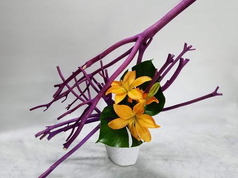 ikebana2018-10(3)B