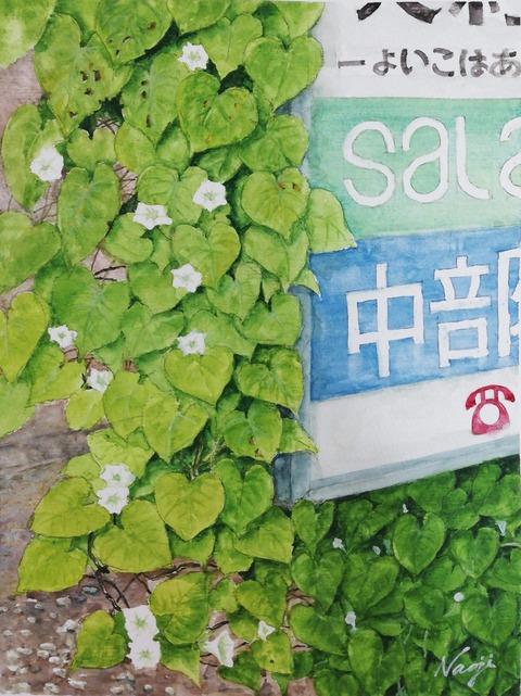松本直次2020-10「マメアサガオ(豆朝顔)」(A4)