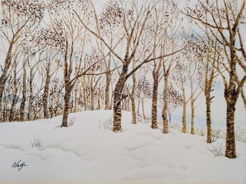 白馬岩岳の冬の木立_2021-02(A4)