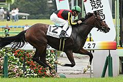 pic_horse1