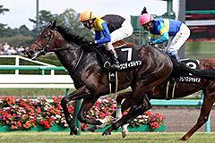 pic_horse5