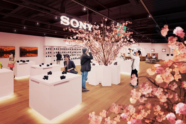 SAKURA_in_Sony_Store_Main_OneColor_20170227_PIA0001014876