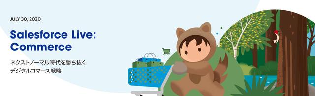 Salesforce Live Commerce