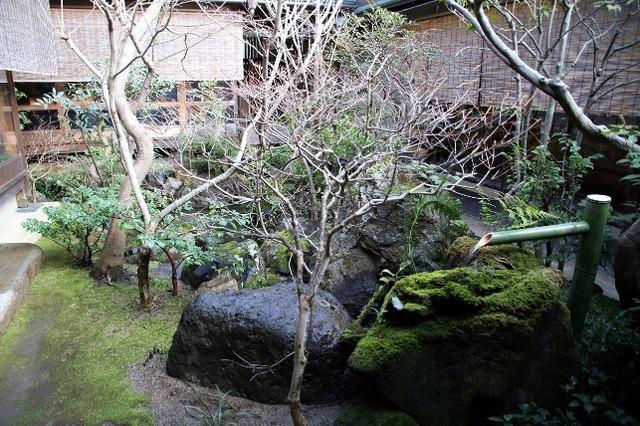 「瓢亭 別館」の美しい坪庭