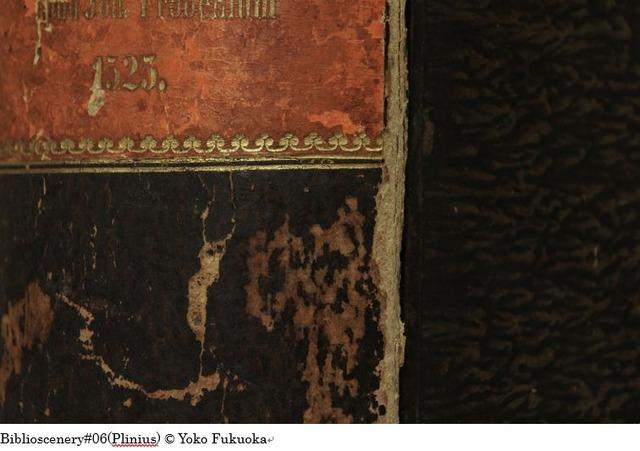 Biblioscenery#06