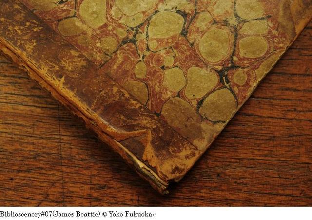 福岡陽子写真展「Biblioscenery  ビブリオシナリー」