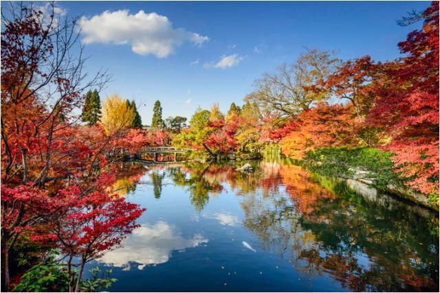 【ブッキング・ドットコム】Kyoto_Japan