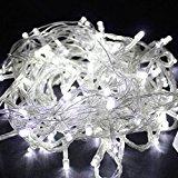 Wentop 10M 100 LED フェアリーストリングライト クリスマス、結婚式、パーティデコレーション ホワイト