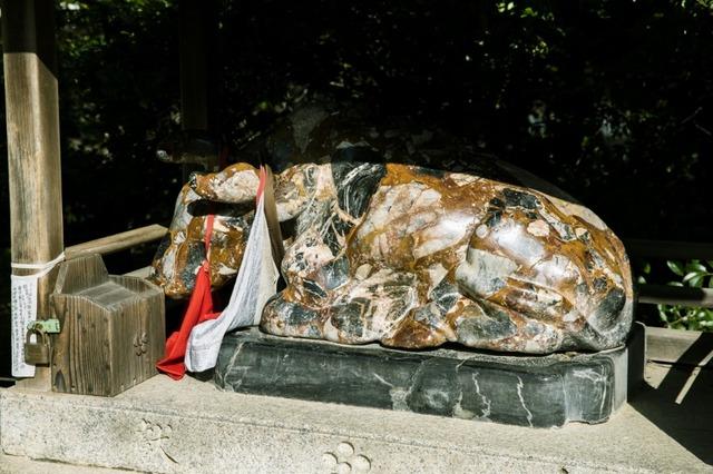 丑の像はよく見ると、いろいろな石で構成されているのがわかる
