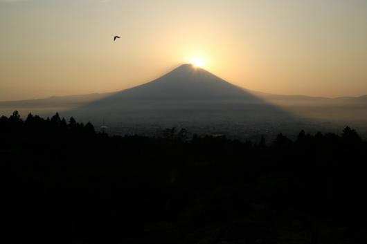 富士山-thumb-530xauto-2398