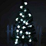Esky SL50 ソーラー屋外LEDストリングライト20フィート(メートル)30 LEDホワイトクリスタルボールグローブクリスマスライト 庭のフェンスパスの風景デコレーション用[ホワイト]