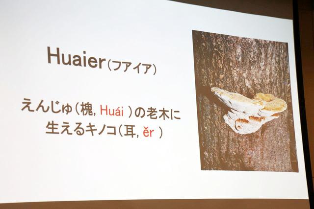 フアイアは槐(えんじゅ)の老木に寄生する珍しいキノコで、日本では採れない