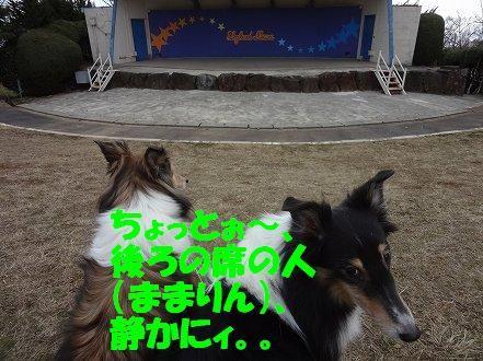 しゅせDSC07946