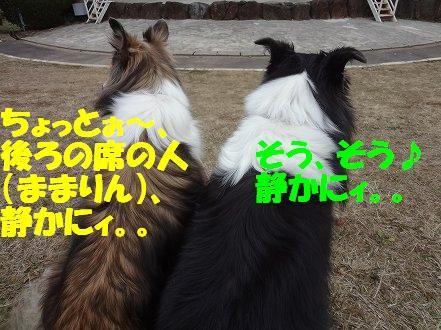 しゅせDSC07945