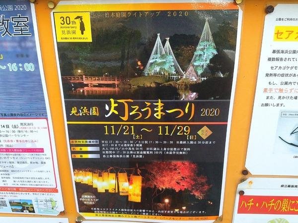 20-11-13-18-12-25-822_deco