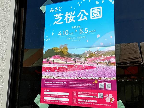 misatoshibazakura_2