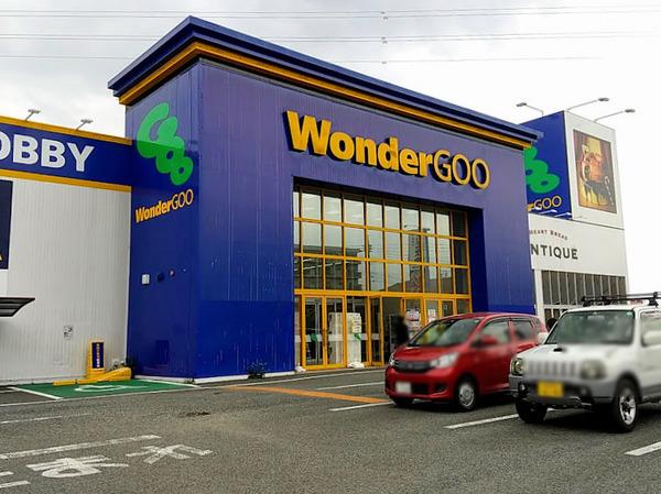 wondergoo_1