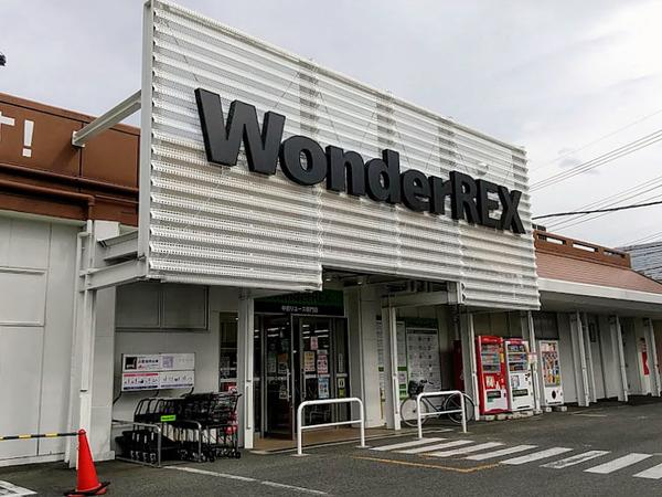 wondergoo_6
