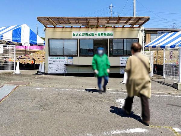 misatoshibazakura_4