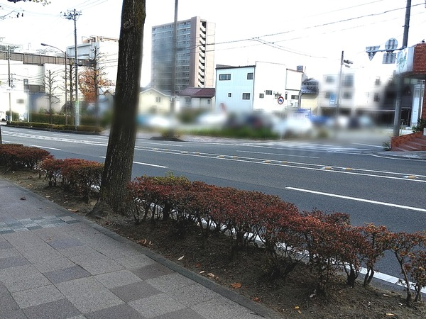 Point Blur_20201115_110332[1]