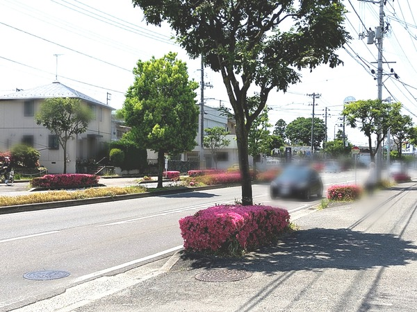 Point Blur_20200619_162426[1]
