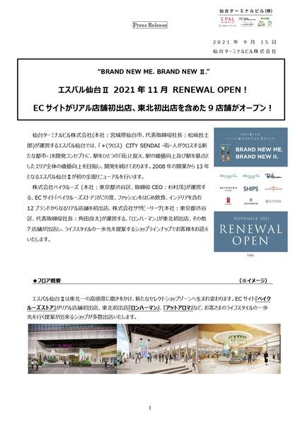 エスパル仙台_pages-to-jpg-0001
