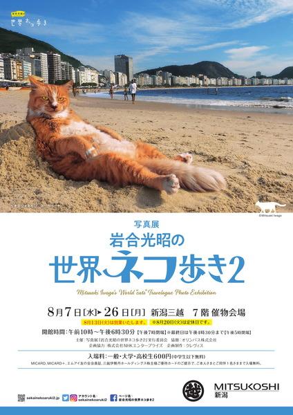 世界ネコ歩き展-1