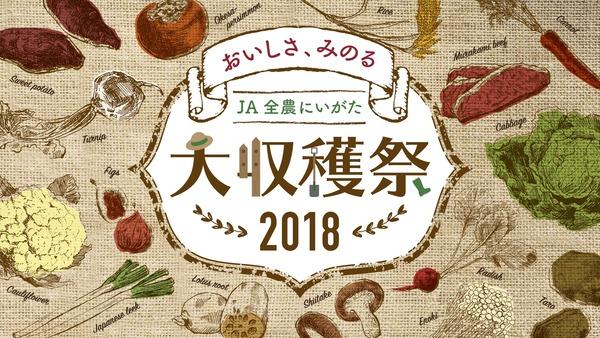 メインビジュアル【校了】 (1)