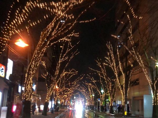 絶賛開催中!『けやき通り』が幻想的な光のトンネルに!12月7日から開催してる『光のページェント 31st』行ってみた。2019年1月31日まで。