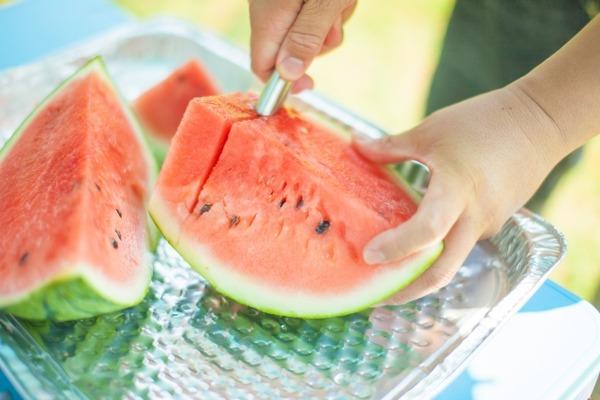 夏だ!すいかだ!メイワサンピアだ!今年も開催!西区大農業まつり『すいかまつり』すいか尽くしの1日を。7月7日。