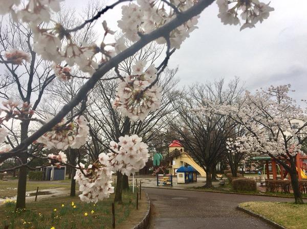 2017-04-15-14-20-40