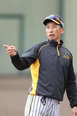 阪神・矢野新監督のお願い秋季練習初日はベテランも全員集合!