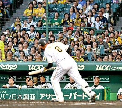 金本阪神 痛恨ドロー貧打にバントミスで0行進…3位・巨人と2・5差のまま