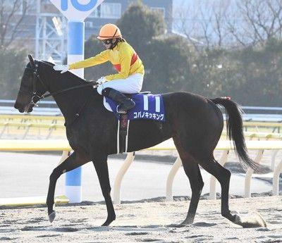 菜七子騎乗で話題のコパノ次走は「東京スプリント」に決定