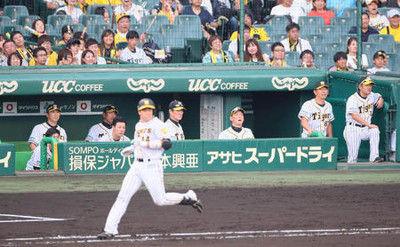 阪神借金10単独最下位…甲子園19勝33敗1分け
