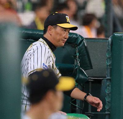 阪神甲子園で39敗球団ワーストを更新10日本拠地最終戦金本監「何としてでも」