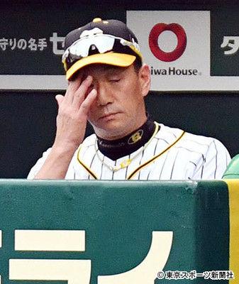 阪神3連敗で最下位転落金本監督「残り試合がある。頑張ります」