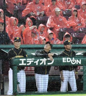 阪神 5年ぶりシーズン打ち切りの可能性も…深夜の鯉倒もCSへ地獄の14連戦