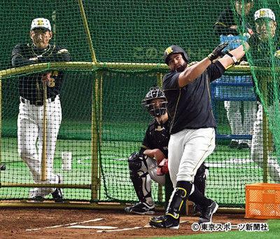 阪神・ロサリオが東京ドームで柵越え9本!金本監督は4番起用を明言