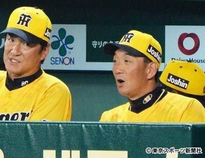 阪神が甲子園連敗5で止める金本監督「本当に長かった」