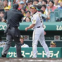 【阪神】金本監督、甲子園で今季19勝34敗1分け「ここに来たら変わりますな」