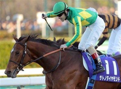 サトノダイヤモンドが競走馬登録を抹消、社台スタリオンステーションで種牡馬に