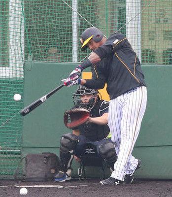 阪神新外国人マルテ、特打で3連発1回、2連発2回